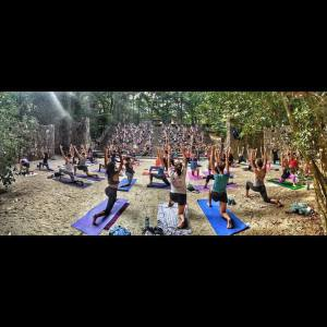 Many thanks for the images from Franklin Street Yoga Center!